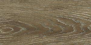 Tangent Petrified Shale T20-604